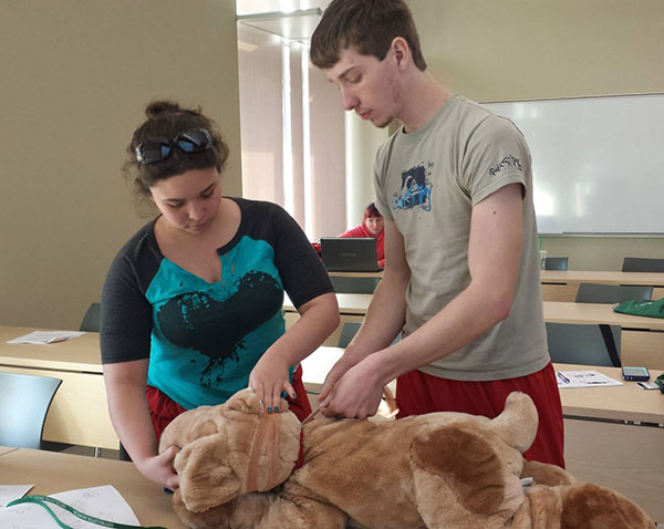 Pet-First-Aid-Class-600