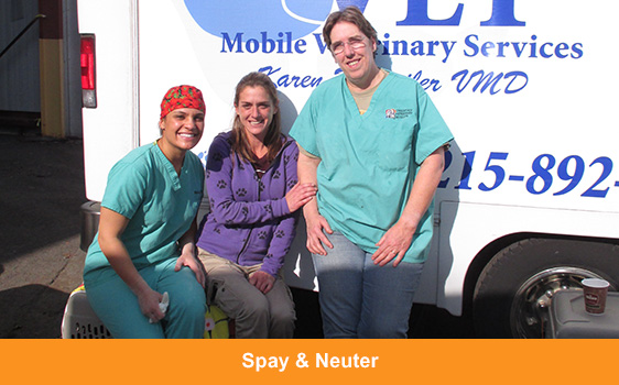 spay-neuter-block